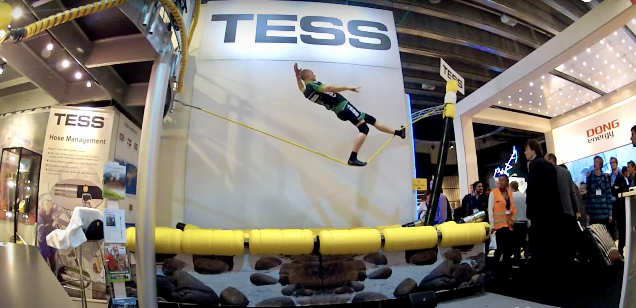 TESS Event, Artist